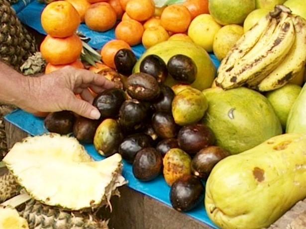 Die Frucht Umarí aus Peru: (c) Gabel Daniel Sotil García