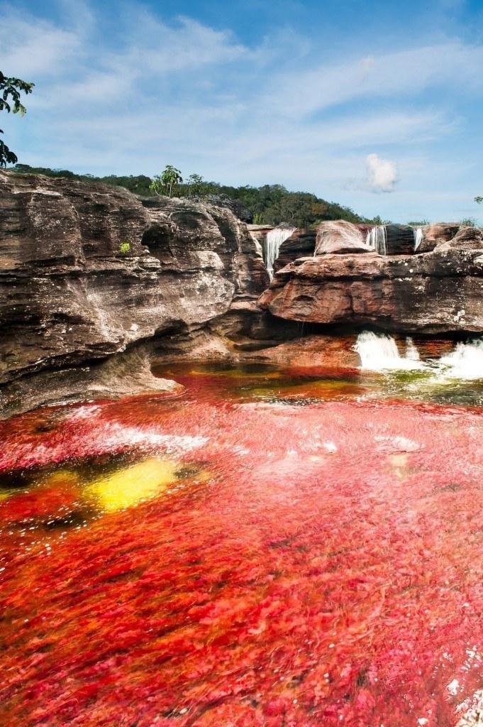 Cano-Cristales-Impresionante-rio-en-Colombia