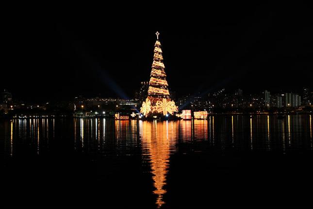 Weihnachten in Südamerika: der weltgrößte Weihnachtsbaum steht in Rio de Janeiro.